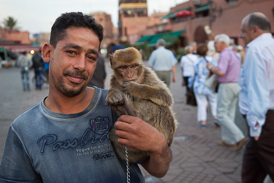 Monkey with Vendor, Marrakech, Morocco