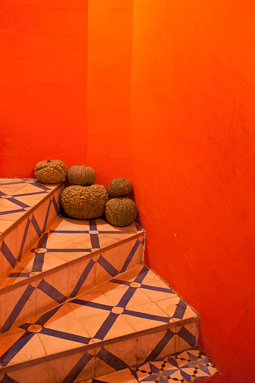 Squash on Stairs, Morocco