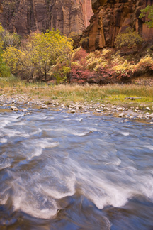 Zion's Splendor in Autumn
