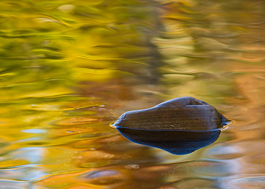 USA, Arkansas. Ozark Mountains. Fall colors reflected in Richfield Creek.